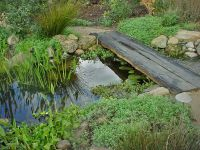 25+ best ideas about Pond Landscaping on Pinterest ...