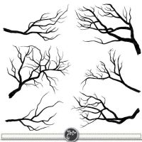 25+ best ideas about Tree Branches on Pinterest   Branches ...