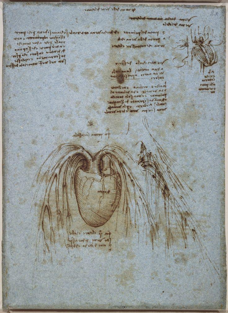 Heart Diagram Human Heart Drawing Vaughn39s Summaries
