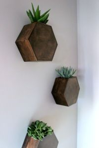1000+ ideas about Wall Planters on Pinterest | Wall ...