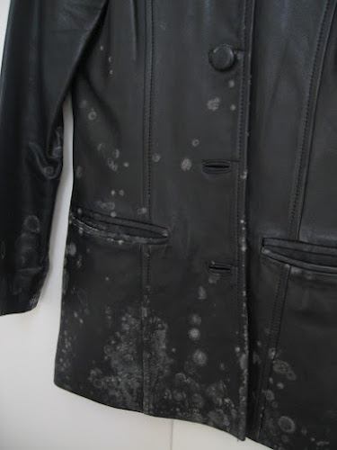 How to clean mold from clothes  Bless this Mess