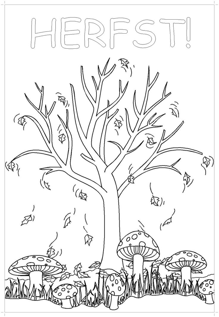 255 Best Images About Fall Coloring Pages