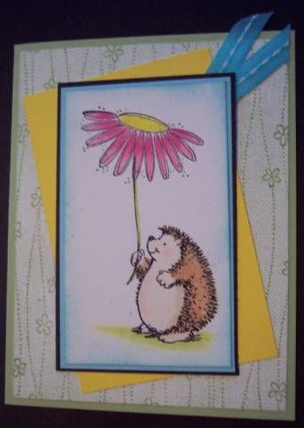 16 Best Images About Hedgehog Happiness Cards On Pinterest