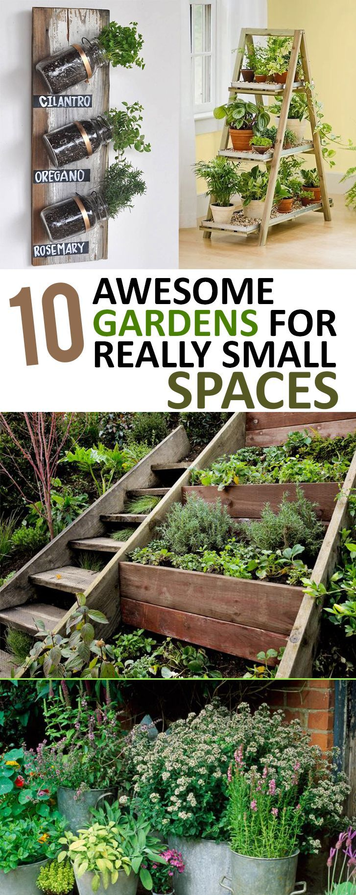 25 Best Ideas About Small Space Gardening On Pinterest Tomato