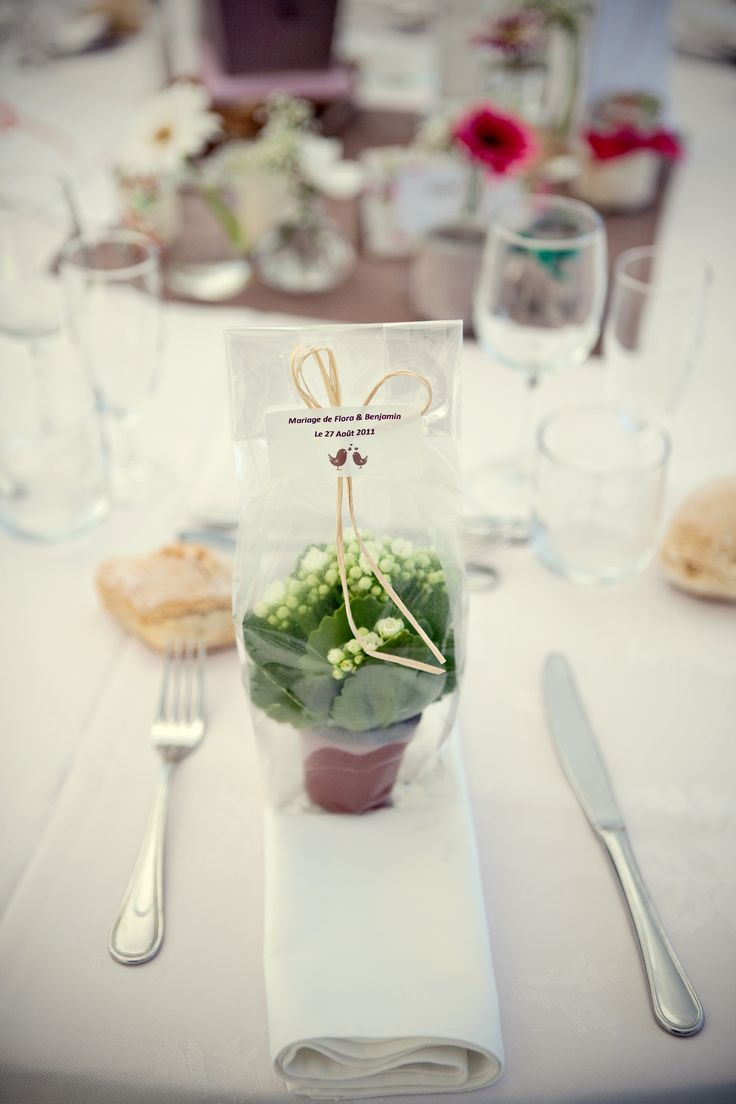 25 best ideas about Plant Wedding Favors on Pinterest  Wedding favour plants Favor favor and