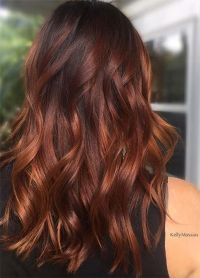 Best 20+ Auburn hair colors ideas on Pinterest | Auburn ...