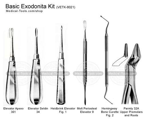 Basic Exodontia Kit Veterinary Instruments Medical Tools