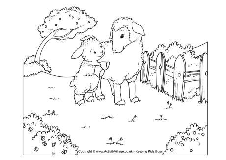 Sheep Scene Colouring Page Menus Amp Flyers Pinterest