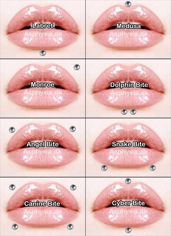 face piercing diagram and names toyota car alternator wiring lip | information on piercings pinterest piercing, what i want