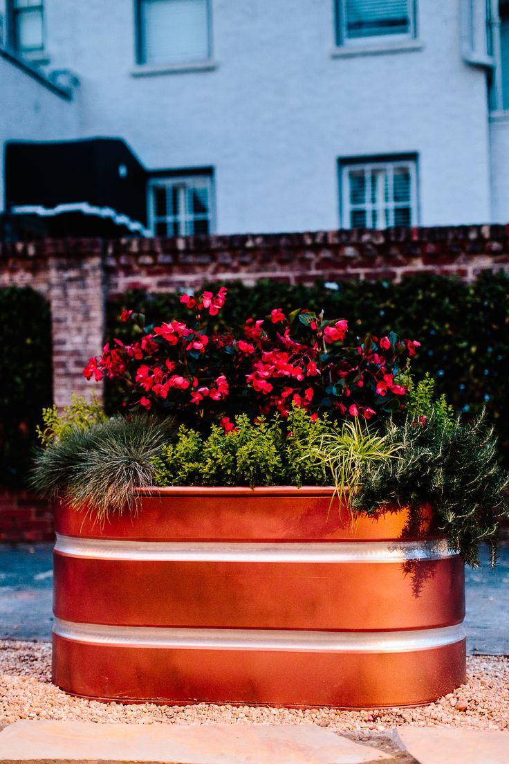 25 Best Trough Planters Ideas On Pinterest Garden