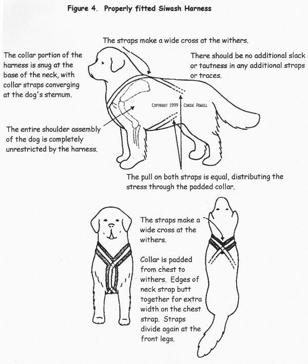 Sewing Pattern For No Pull Dog Harness Vest