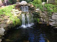 25+ best ideas about Koi pond design on Pinterest   Pond ...