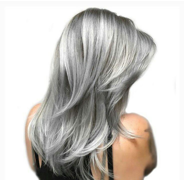 Gray Hair Color Shades Beso