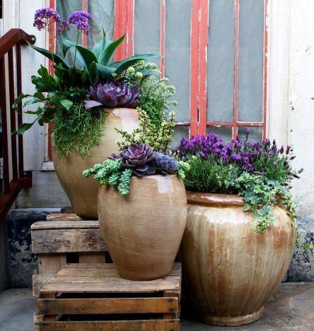 25 Best Ideas About Outdoor Pots On Pinterest Outdoor Potted