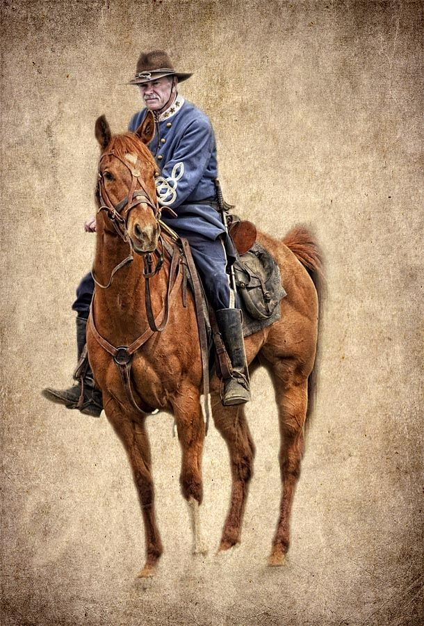 Confederate Officer On Horse At A Civil War Reenactment