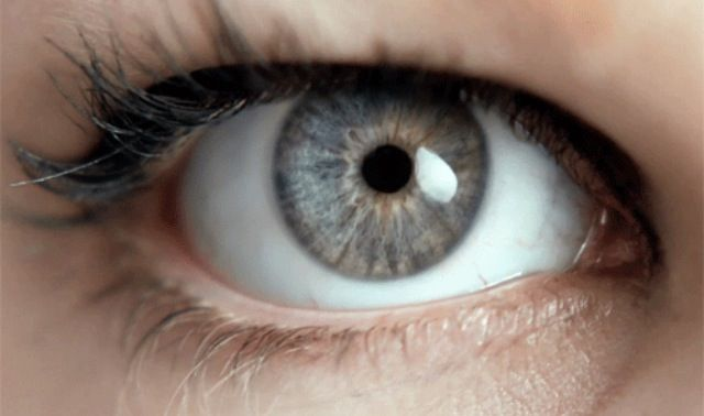 Student Pocket Guide - What Does Your Eye Colour Say About You