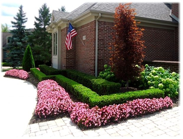 25 Best Ideas About Boxwood Hedge On Pinterest Patios Boxwood