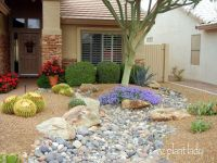 25+ best ideas about Zero Scape on Pinterest | Desert ...