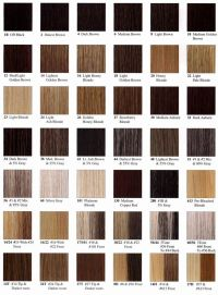 Hair Colors For Warm/dark Skin Tones Black Women | Beauty ...