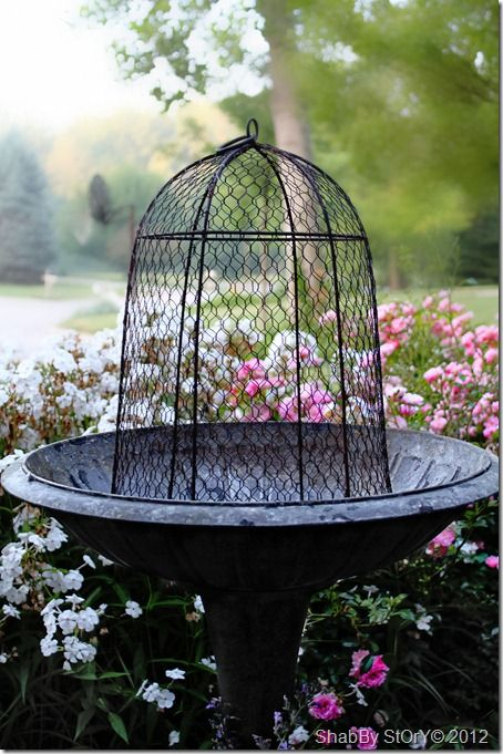 The 25 Best Ideas About Garden Cloche On Pinterest May 24