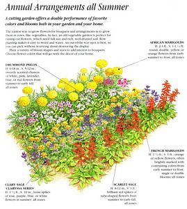 25 Best Ideas About Flower Garden Layouts On Pinterest