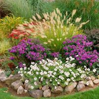 17 Best images about Fall Flower Beds for Ohio on ...