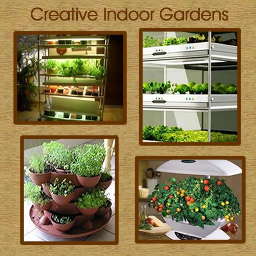 25 Best Ideas About Indoor Vegetable Gardening On Pinterest