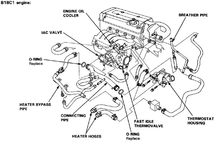 110cc Chinese Quad Wiring Diagrams