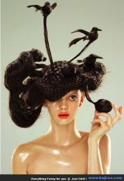 1000 ideas funny hairstyles