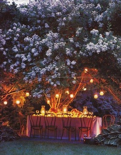 The 25 Best Ideas About Evening Garden Parties On Pinterest