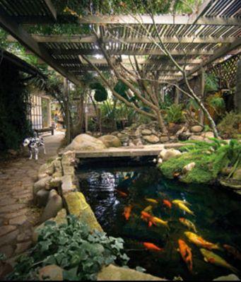 Beautiful Koi Pond Http Www Greenturf Com Water