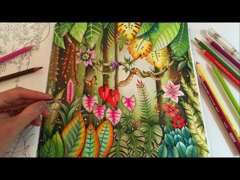 1000 Ideas About Johanna Basford Coloring Book On
