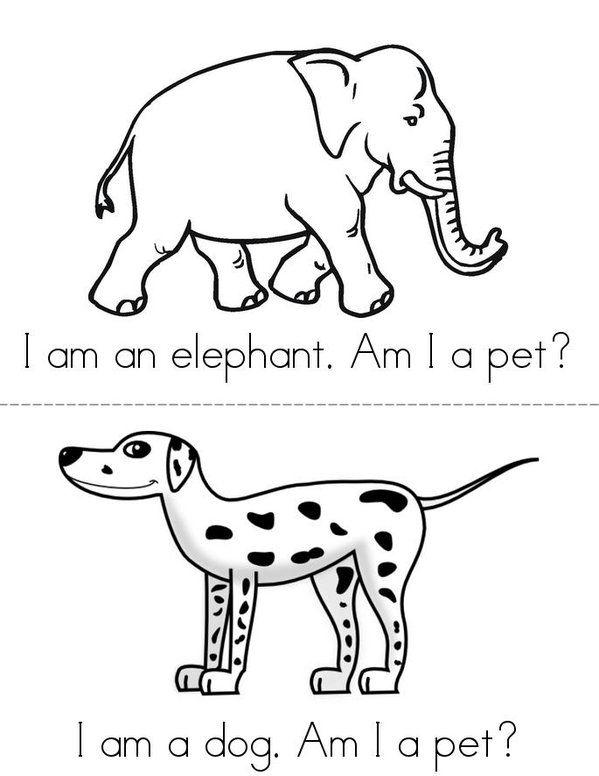 37 best images about Preschool Pets on Pinterest