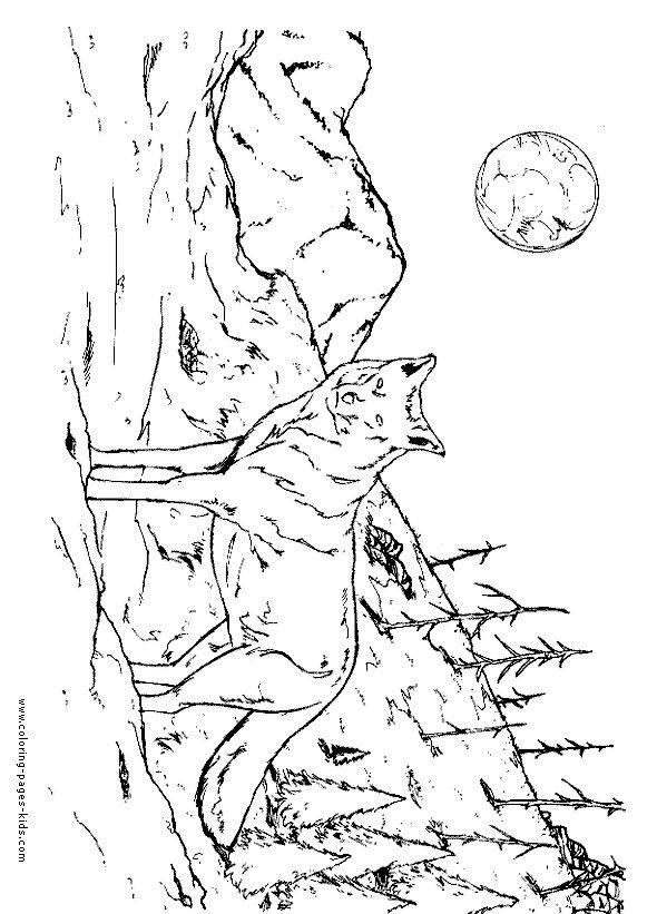 82 best images about Dessins de Loups à colorier on