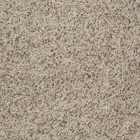 """HGTV HOME Flooring by Shaw Carpeting in style """"Happy ..."""