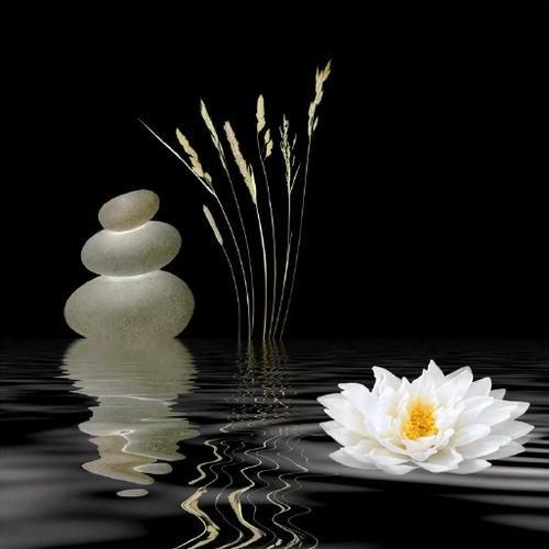 Download Free Love Disappointment Wallpaper Quotes 67 Best Images About Buddha Amp Zen On Pinterest Buddha