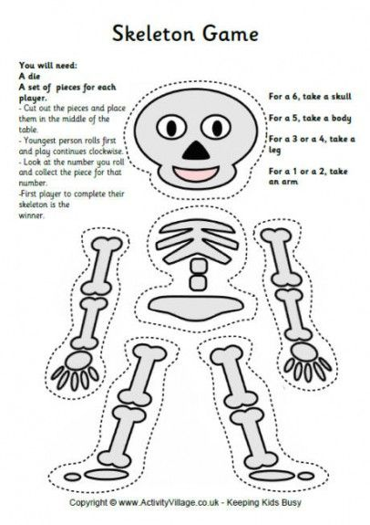 35 best images about Skeleton on Pinterest