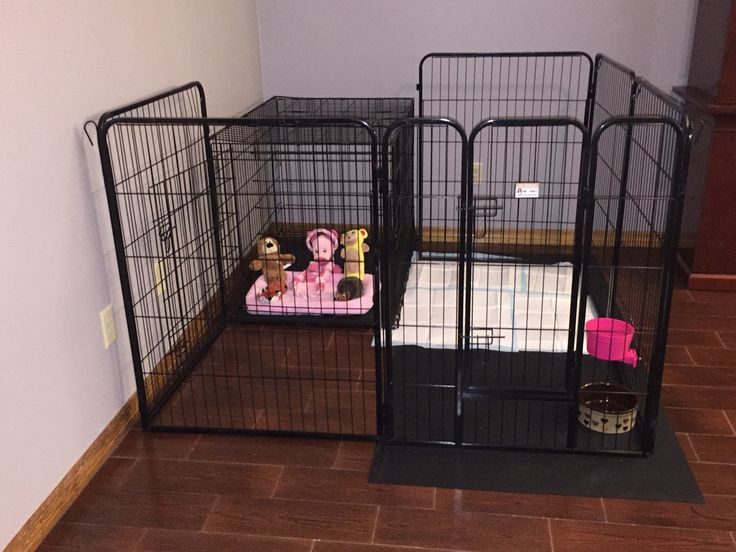 Puppy crate and playpen   Dogs  Pinterest  Kittens