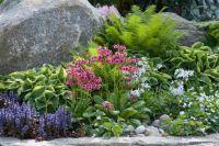 Garden Ideas, Border ideas, Perennial Planting, Perennial ...