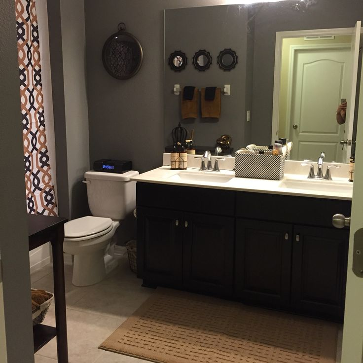 Sherwin Williams Dovetail Grey Walls Bathroom