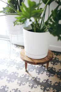 Wooden Plant Stands Indoor - WoodWorking Projects & Plans