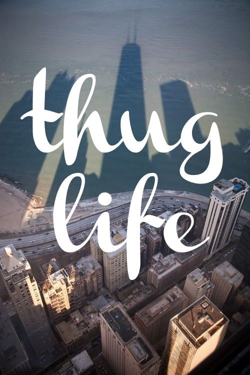 Cute Heart Wallpapers For Iphone 6 Thug Life Quotes Pinterest Life And Thug Life