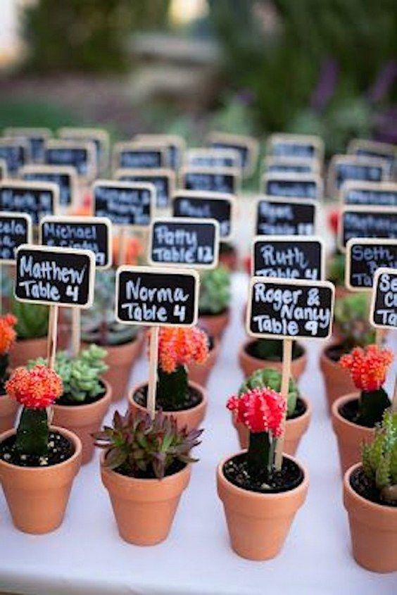 25 Best Ideas About Wedding Favour Plants On Pinterest Wedding