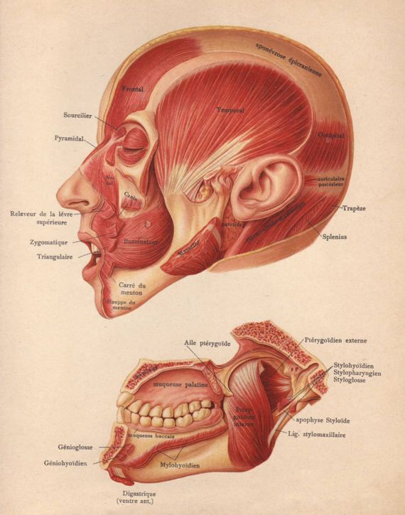 17 Best images about Antique prints on Pinterest | Theater ...