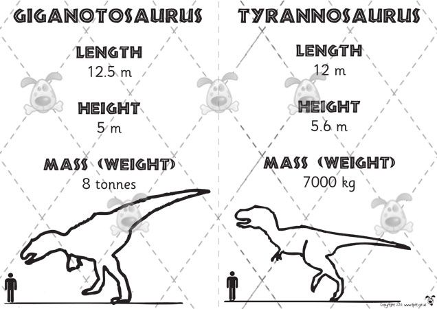 82 best images about Year 1 dinosaur topic on Pinterest