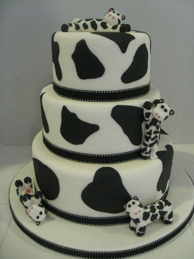 Cow Cake Food Art Pinterest Cakes Chang E 3 And Cow
