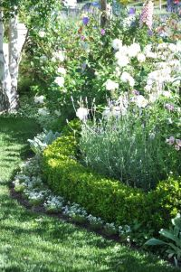 25+ best ideas about Boxwood Hedge on Pinterest | Hedges ...