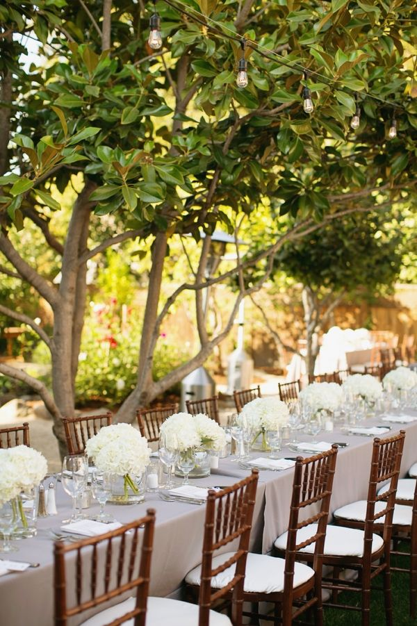White Hydrangea Arrangements on Long Reception Tables. Simple elegance. I LOVE!