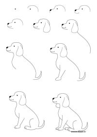 25+ best How To Draw Dogs ideas on Pinterest | Dog drawing ...