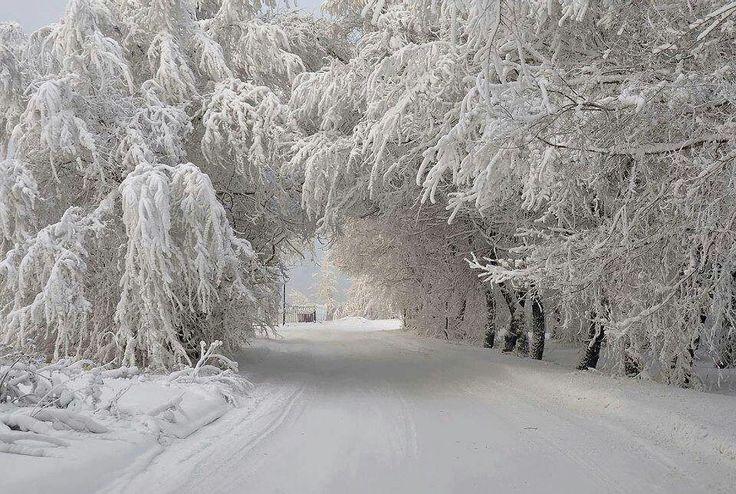 Paesaggio Invernale Hd